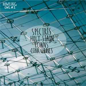 Spectres , Towns, Holy Stain, Concubines - Howling Owl Records #1 álbum